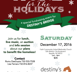destinysbridge_fundraiser_2016_updated